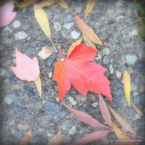 Fall leaf by Alison Day Designs