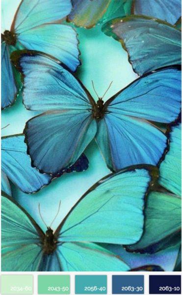 Turquoise colour scheme inspiration