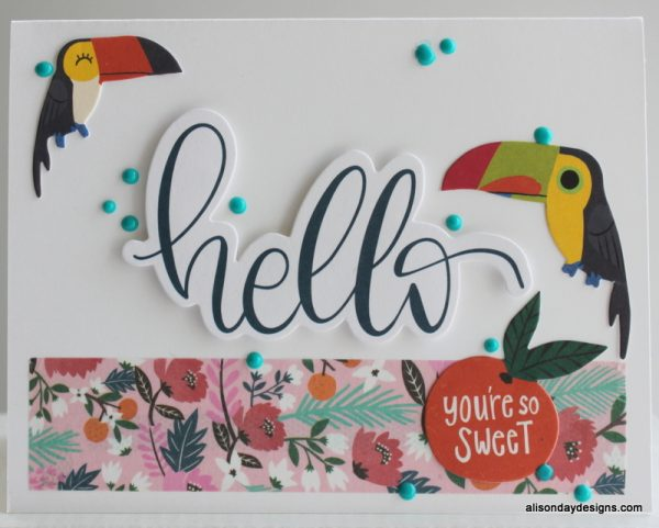 Hello Toucan card by Alison Day